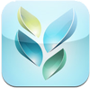 Socrative app icon